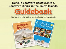 Picture of Guidebook